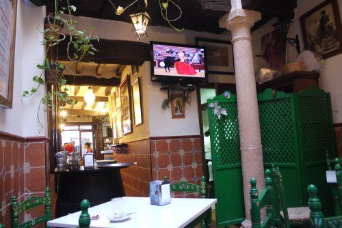 Ronda Bullfighting on TV
