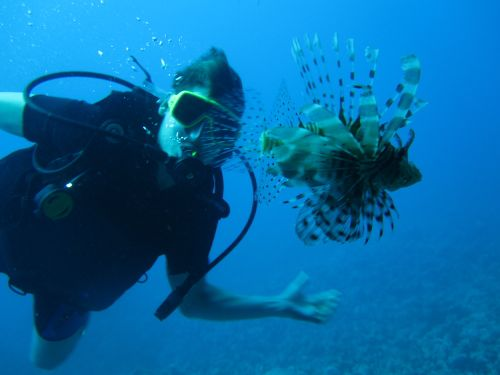 Pat and Lion Fish