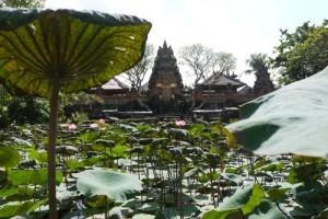 Bali, Indonesia – Life in Ubud