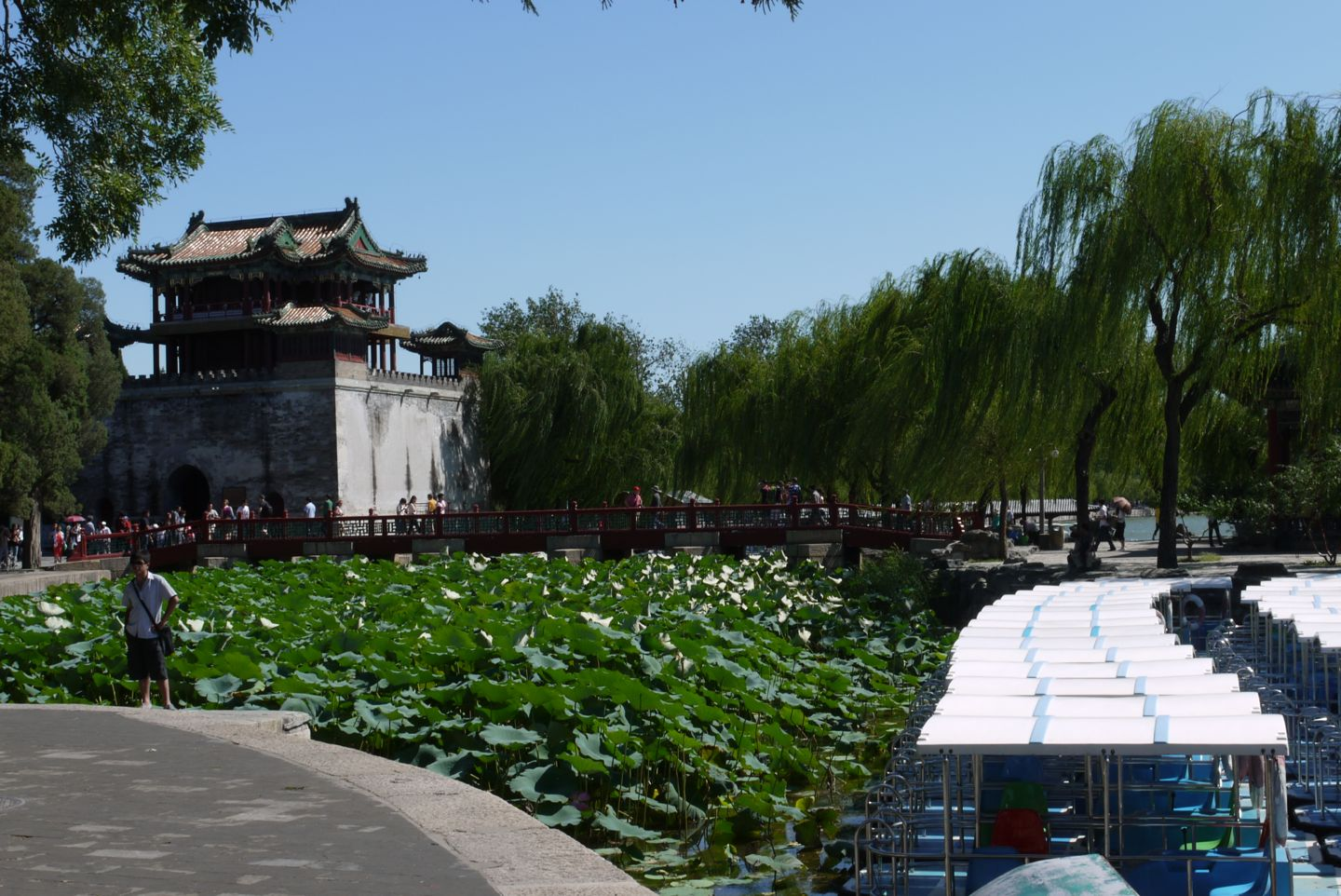 the grounds of the Summer Palace